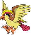 018Pidgeot Dream