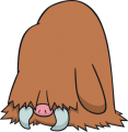 221Piloswine Dream