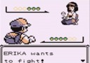 pokemon blue screenshot 18