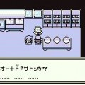 pokemon green screenshot 12