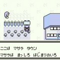 pokemon green screenshot 20