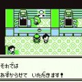 pokemon green screenshot 29